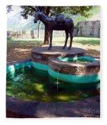 Donkey Fountain Fleece Blanket