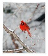 Don't Chirp With Your Mouth Full Fleece Blanket