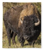 Don't Mess With This Bison Fleece Blanket
