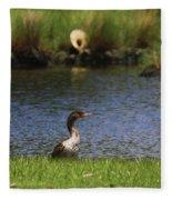 Double-crested Cormorant 3 Fleece Blanket