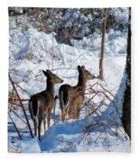 Double Look Fleece Blanket