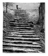 Dovedale Steps Fleece Blanket