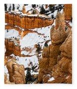 Down Into The Canyon Fleece Blanket
