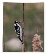 Downy Woodpecker On Cattails Fleece Blanket