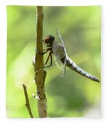 Dragonfly Slow Dance Fleece Blanket