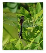 Dragonfly 1 Fleece Blanket