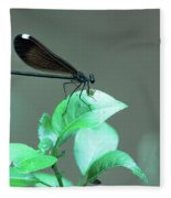 Dragonfly 1 Fleece Blanket