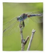 Dragonfly Against Green Backdrop Fleece Blanket