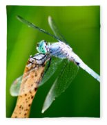 Dragonfly Blue Fleece Blanket