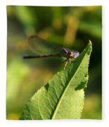 Dragonfly Called Funny Face Fleece Blanket