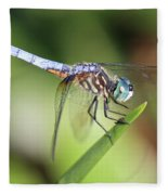 Dragonfly Captures Tiny Cockroach Fleece Blanket