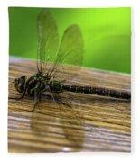 Dragonfly Colors Fleece Blanket