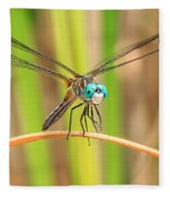 Dragonfly Fleece Blanket