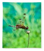 Dragonfly Hanging On Fleece Blanket