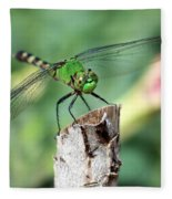 Dragonfly In The Flower Garden Fleece Blanket