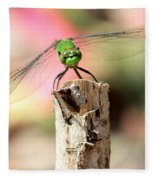 Dragonfly In The Petunias Fleece Blanket