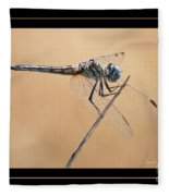 Dragonfly Needlepoint With Border Fleece Blanket