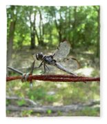 Dragonfly On Barbed Wire Fleece Blanket