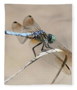 Dragonfly On Bent Reed Fleece Blanket