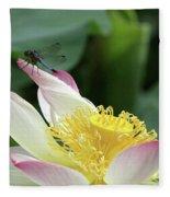 Dragonfly On Lotus Fleece Blanket