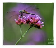 Dragonfly On Purple Verbena Fleece Blanket