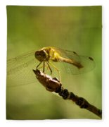 Dragonfly Perched Fleece Blanket