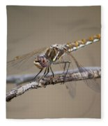 Dragonfly Resting Fleece Blanket