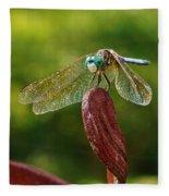 Dragonfly Resting II Fleece Blanket