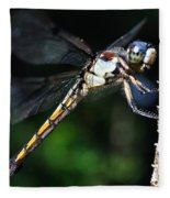 Dragonfly Revisited Fleece Blanket