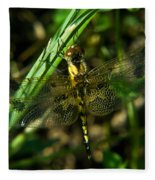 Dragonfly Venation Revealed Fleece Blanket