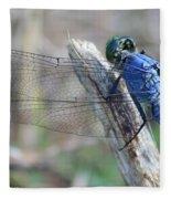 Dragonfly Wing Detail Fleece Blanket