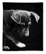Dramatic Black And White Puppy Dog Fleece Blanket