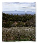 Draney Orchard Pano Fleece Blanket