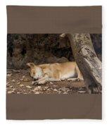 Dream Time Fleece Blanket