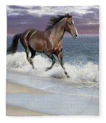 Dreamer On The Beach Fleece Blanket