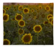 Dreaming In Sunflowers Fleece Blanket