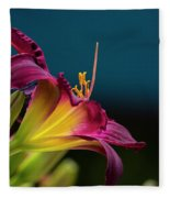 Dreaming In Technicolor Fleece Blanket