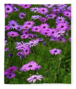 Dreaming Of Purple Daisies  Fleece Blanket