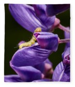 Dreaming Of Wings Fleece Blanket
