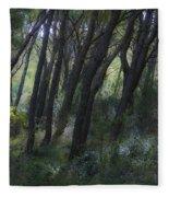 Dreamy Marjan Forest In Croatia Fleece Blanket