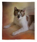 Dreamy Snowshoe Cat Fleece Blanket