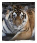 Dreamy Tiger Fleece Blanket