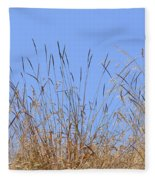 Dried Grass Blue Sky Fleece Blanket