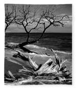 Driftwood Bw Fine Art Photography Print Fleece Blanket