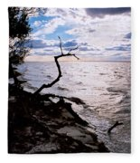 Driftwood Dragon-barnegat Bay Fleece Blanket