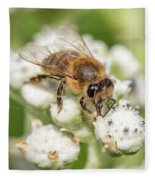 Drinking Up The Nectar, Apis Mellifera Fleece Blanket