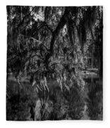 Drippin With Spanish Moss At Middleton Place Fleece Blanket