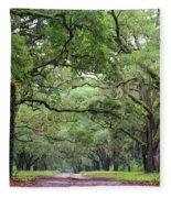 Driveway To The Past Fleece Blanket