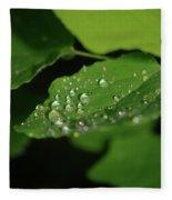Droplets On A Leaf  Fleece Blanket