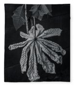 Dry Leaf Collection Bnw 2 Fleece Blanket